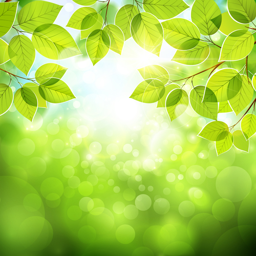 Summer-green-leaves-with-sunlight-vector-background-02